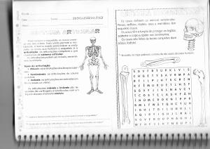 Leitura e exercicio sobre ossos e articulação