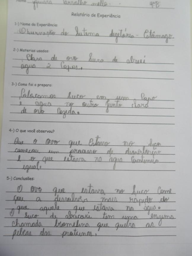 Imagem mostra relatório produzido por aluna após observar experiência de digestão e ação do suco gástrico no organismo.
