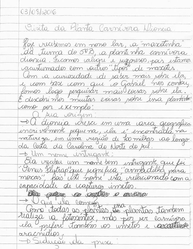 Relatório produzido pelas famílias após a visita da planta carnívora