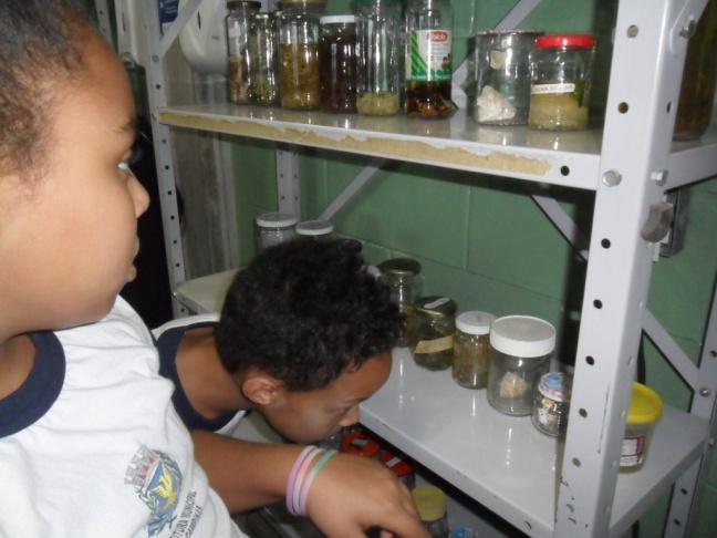 Alunos investigando o laboratório antes da experiência com digestão