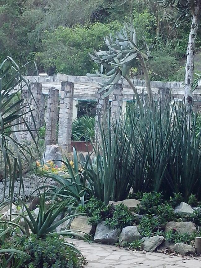 Um dos cantinhos especiais do Jardim Sensorial