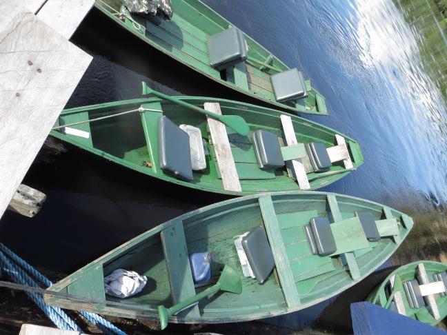 Reserva de Desenvolvimento Sustentável Mamirauá, Amazônia, Brasil. Pousada Uacari.