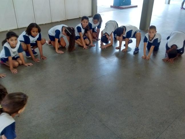pratica de ensino de ciencias medindo temperatura