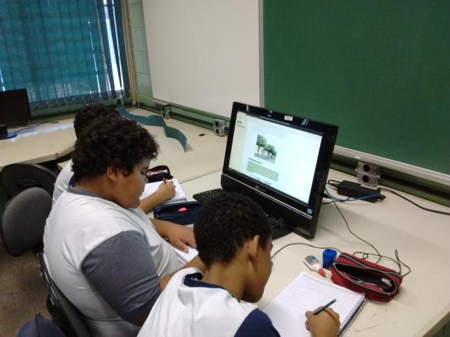 plantio de alameda de arvores na escola