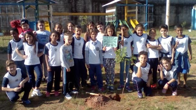ação ecológica na E.E.I. Zeferino Vaz, Campinas, São Paulo