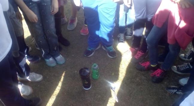 projeto alameda amostra de solos