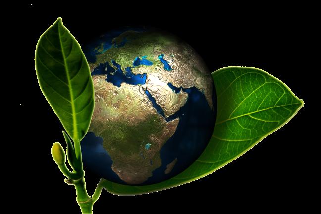 planeta Terra ecologia