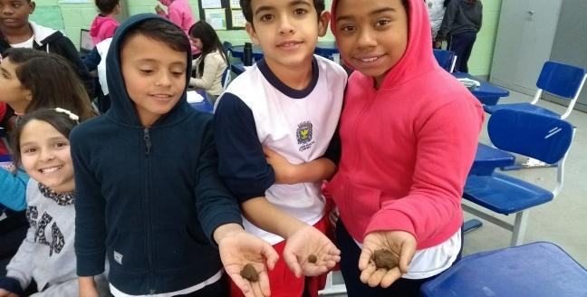 projeto alameda amostra de solos. Ensino de Ciências, anos iniciais, ensino fundamental. Estudo do Solo. Projetos Pedagógicos.