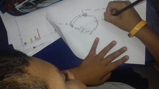 Sequência didática ciclo de vida da lagarta. Anos iniciais, ensino fundamental, ensino de Ciências.